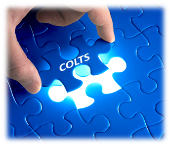 A picture using a jigsaw puzzle analogy for your business, with COLTS as the last piece being put into place in the puzzle